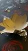 fleurs kraft et alu noël